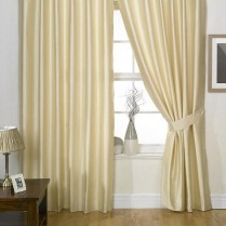 Pair of Champagne Faux Silk Eyelet Curtains