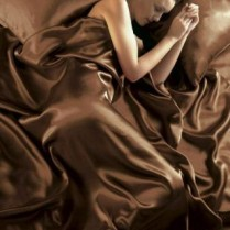 Chocolate Brown King Bed Size Satin Complete Duvet Cover Bed Set